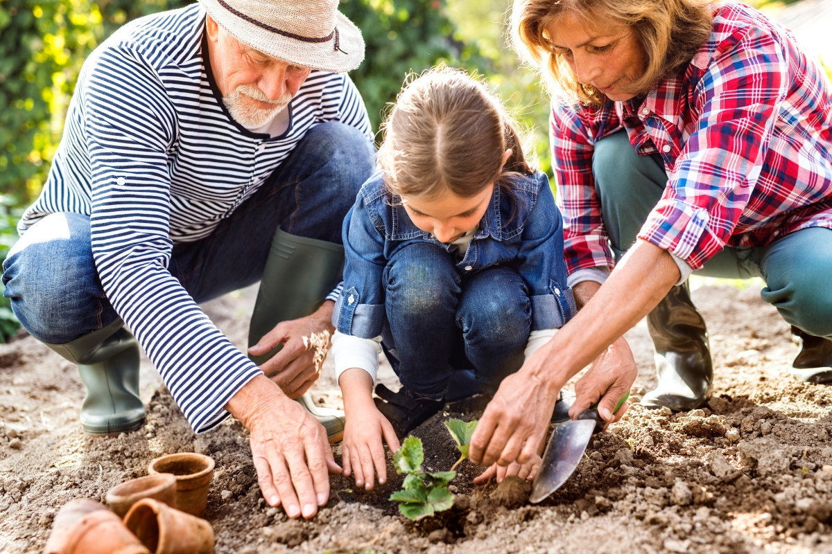 Grow Your Savings With AGarden